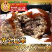 ハンバーグ 4個 |同梱用| 黄金比率ハンバーグ セール お中元 食べ物 国産 和牛 肉 冷凍 プレゼント
