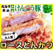 ロース とんかつ 2枚(約120g/枚) けんこう 豚 | 肉 お中元 プレゼント ギフト 後払い 可能 国産 冷凍
