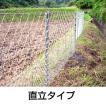 「簡単金網パネルフェンス 100メートル 直立タイプ」