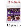 アサイー パルプ 100g×40袋 フルッタフルッタ 冷凍 アサイーピューレ