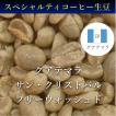 コーヒー生豆 1kg グアテマラ サン・クリストバル フリーウォッシュド