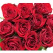 あこがれの赤薔薇 欲しい数だけ花束