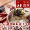 まとい食品 辛子高菜油炒め 250g メール便送料無料 ポイント消化