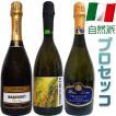 ワイン 夏 プロセッコ スパークリング 自然派 ビオ 3本セット イタリア BBQ  パーティー