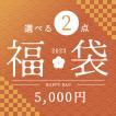 福袋 インテリア 雑貨 小物 ゴミ箱 照明 クッション よりどり2点福袋 5000円 アウトレット ZA2PC01