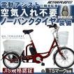 電動アシスト 三輪自転車 電動 自転車 ノーパンク パンクしない シニア 大人用 三輪車 ミムゴ MG-TRM20EBNF