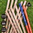 名入れ 鉛筆 三角ねーむ鉛筆 トロワ 2B 三角鉛筆 卒園 記念品 オリジナル えんぴつ 木目 ウッド