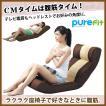 【送料無料】purefit ピュアフィット 腹筋らくらく座椅子 [PF2000] 背面ポケットにレッグバーが収納
