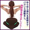 【送料無料】purefit ピュアフィット ゆらゆら姿勢座椅子 ブラウン  [PF2300] 猫背. 腰痛予防 くびれウエスト、ポッコリお腹、姿勢、骨盤が気になる方に最適!