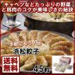 浜松餃子(45粒) 送料無料 おそうざい お取り寄せグル メ ーカー直送 17-3708-537