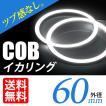 COB イカリング 60mm LED ホワイト/白 エンジェルアイ 拡散カバー付 2個セット 送料無料