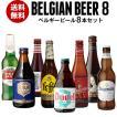Beer王国 ベルギービール 8種8本セット 7弾  詰め合わせ 飲み比べ 長S