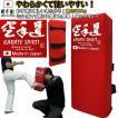 空手道 キックミットソフトタイプ 500g 日本製 赤 ライナースポーツオリジナル