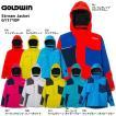 17-18 GOLDWIN(ゴールドウィン)【在庫処分商品】 Stream Jacket (ストリーム ジャケット) G11710P【スキーウェア】