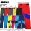 17-18 GOLDWIN(ゴールドウィン)【在庫処分商品】 Stream Pants (ストリーム パンツ) G31713P【スキーパンツ】