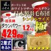 ポーランド産ホワイトマザーグースダウン93% 2層キルト 二層 ロイヤルゴールドラベル 日本製 極 スペシャル シングル