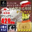 ポーランド産ホワイトマザーグースダウン93% 2層キルト 二層 日本製羽毛布団  極 スペシャル ダブル ロイヤルゴールドラベル