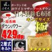ポーランド産ホワイトマザーグースダウン93% 2層キルト二層 ロイヤルゴールドラベル 日本製羽毛布団  極 スペシャル キング