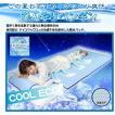 冷感素材 東洋紡 アイスマックス  ひんやり 敷きパット+枕パットセット
