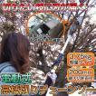 高枝切りチェーンソー のこぎり 切断機 電動 230-290cm ###高枝チェンソET1208###