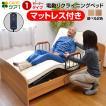 電動ベッド 介護ベッド 電動 リクライニング 電動1モーターベッド ケア1-ART 開梱設置付