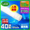 LED蛍光灯40W型工事不要人気上昇中