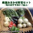 お試し まちのえき厳選 おまかせ旬の野菜セット 6〜7品入り 千葉県よりお届け
