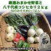 お試し まちのえき厳選 おまかせ旬の野菜セットと精米したての千葉八千代市産コシヒカリ2kg 野菜6品〜7品