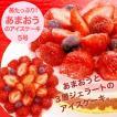 苺たっぷり/あまおうのアイス ケーキ(5号)誕生日ケーキ/送料無料/ジ ェラート/いちご