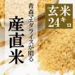 米 24kg 玄米 8kg×3袋小分け 令和元年 青森県産 産直米
