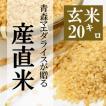米 20kg 玄米 10kg×2袋小分け 令和元年 青森県産 産直米
