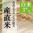 米 3kg 白米 令和元年産 青森県産 産直米 送料無料 日本郵政レターパックプラス発送 対面配達 代引き不可 日時指定不可
