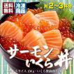 お中元 海鮮 ギフト 送料無料 サーモン イクラ 丼 高級 海鮮セット 海鮮丼 刺身 2〜3杯分 お父さん お母さん 贈り物 プレゼント 食べ物