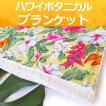 ハワイ ブランケット おくるみ ひざ掛け オーガニック コットン 綿 (ハワイ 花 ボタニカル) ミンキー 出産祝い