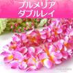 フラ プルメリア ダブル レイ ( 桜 チェリー ピンク & ホワイト ) たっぷりボリューム 110cm