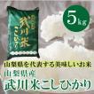 山梨県産  武川米 コシヒカリ  5kg  白米 通販 南アルプスの清流水で育った美味しいお米