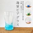 琉球ガラス 海蛍 ビアグラス/ギフトにおすすめビールグラス