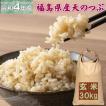 天のつぶ 30kg 玄米 福島県産 お米 30年産 送料無料 『30年福島県産天のつぶ玄米30kg』