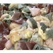 牛肉 内臓 ホルモン ミックス 鍋 焼肉 バーベキュー BBQ 牛ミックスホルモン 500g 「タレ無」商番420