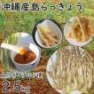 沖縄産 生 島らっきょう ラッキョウ 新鮮 土付き 2.5kg 大ぶり らっきょう