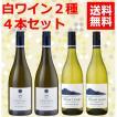 ワインセット 白2種類4本セット 白ワイン 送料無料 ソーヴィニヨンブラン ニュージーランド産 wine set