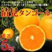 清見タンゴール 秀 2L 5kg 特選品 三崎 清見オレンジ ギフト 産地直送 3月発送