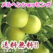 二十世紀梨 「梨次郎」 1.7kg 2L(6個入り)