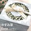 父の日  かすみ草 Ecrin-エクラン- アレンジ 花 ギフト プレゼント 2019 mothersday