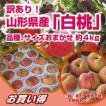 白桃 送料無料 訳あり!山形県産「白桃」品種、サイズ...
