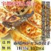 宇都宮餃子 市場のジャンボ餃子 30個×4 1粒35g 送料無料