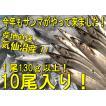 鮮サンマ 10尾 130g以上 秋刀魚 秋の味覚 丸繁