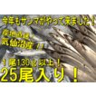 鮮サンマ 25尾 130g以上 秋刀魚 秋の味覚 丸繁