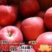 フルーツ りんご 紅玉 Cランク 家庭用 5kg箱入り 予約 訳あり (約4kg 18玉-23玉) 長野県 リンゴ 送料無料 (10月上旬頃〜)