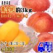 フルーツ 黄金桃 約3kg 予約 長野県産 桃  [クール便] 送料無料 光センサー選果 (ダンボール箱詰 10〜13玉入 8月終わり頃) 黄色い果肉の甘さの濃い桃